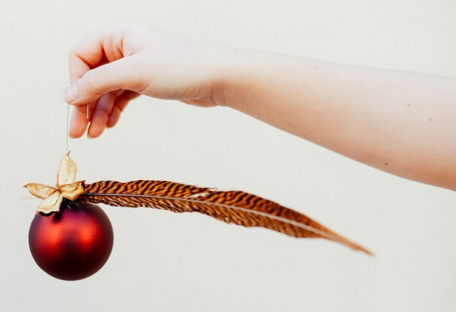 Red Christmas ball ornament with a feather from nature.