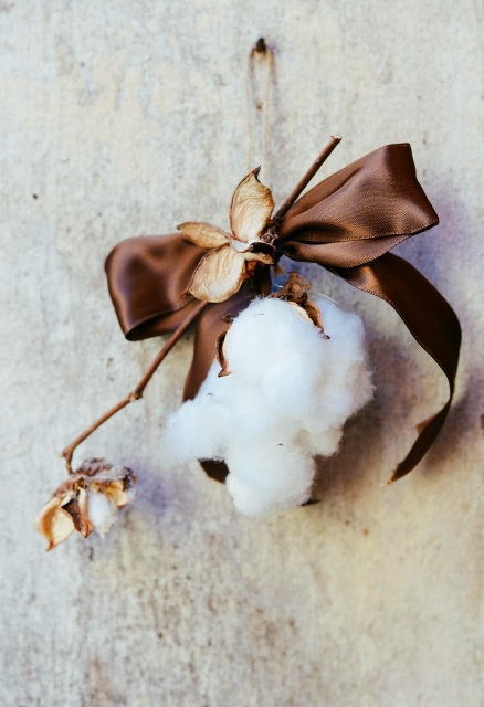 Picked cotton and brown bow made as a Christmas ornament.